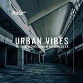 Urban Vibes - The Underground Sound Of House Music 3.7 by Various Artists