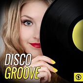 Disco Groove by Various Artists