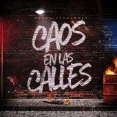 Caos En Las Calles (En Vivo) by Grupo Fernandez