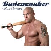 Budenzauber, Vol. 12 - 21 Minimal Techno Tracks by Various Artists