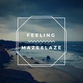 Feeling by Maze