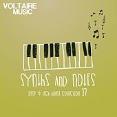 Synths and Notes 17 by Various Artists