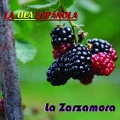 La Ola Española (La Zarzamora) by Various Artists