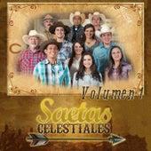 Saetas Celestiales, Vol. 1 by Saetas Celestiales