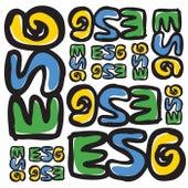 Esg by ESG