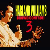 Crowd Control 3 by Harland Williams