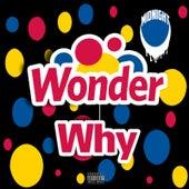 Wonder Why by Midnight