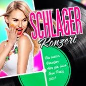 Schlager Konzert - Die besten Discofox Hits für deine Fox Party 2017 by Various Artists