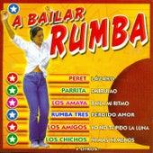 A Bailar Rumba by Various Artists