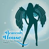 Heavenly House, Vol. 1 (15 House Tunes from Heaven) by Various Artists