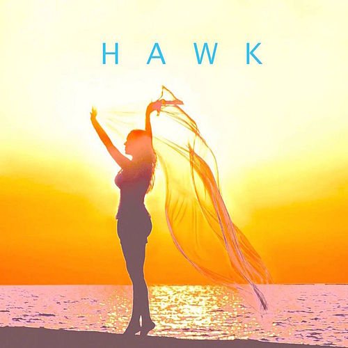 Dimentions by H.A.W.K.