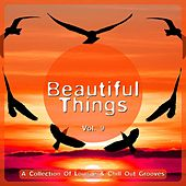 Beautiful Things, Vol. 9 (A Collection of Lounge & Chill out Grooves) by Various Artists