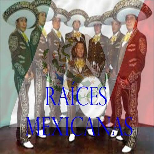 Raíces Mexicanas by Mariachi Vargas de Tecalitlan