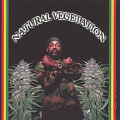 Natural Vegetation by Various Artists