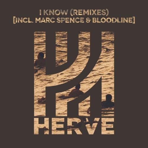 I Know (Remixes) by Hervé