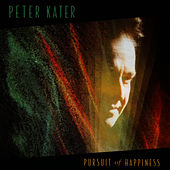 Pursuit Of Happiness by Peter Kater
