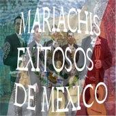 Mariachis Exitosos de Mexico by Various Artists
