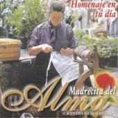 Madrecita del Alma: Grandes Clásicos (Homenaje en Tu Día) by Various Artists
