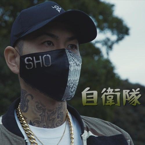 自衛隊 by Sho.