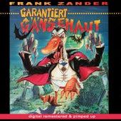 Garantiert Gänsehaut - remastered and pimped up by Frank Zander