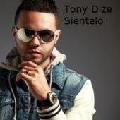 Silentelo by Tony Dize
