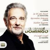 El grande Domingo by Placio Domingo