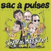 C'est Pas Ma Faute (It Ain't My Fault) by Sac à Pulses