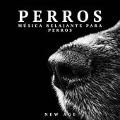 Perros: Musica Relajante para Perros (Sonidos de la Naturaleza) by Various Artists
