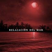 Relajacion Del Mar - Musica para Despertar by Various Artists