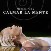 Musica para Calmar la Mente by Various Artists