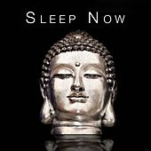 Sleep Now - This Music Is Designed to Help You Relax and Sleep by Various Artists