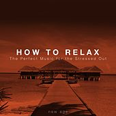 How to Relax: The Perfect Music for the Stressed Out by Various Artists