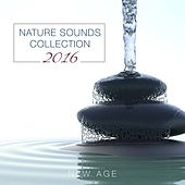 Nature Sounds Collection 2016 by Various Artists