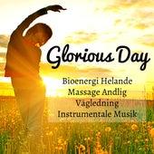 Glorious Day - Bioenergi Helande Massage Andlig Vägledning Instrumentale Musik för Spa Förbättra Koncentration Vägledd Meditation by Native American Flute