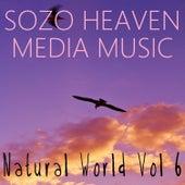 Natural World, Vol. 6 by Sozo Heaven