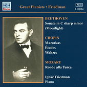 Great Pianists : Ignaz Friedman by Various Artists