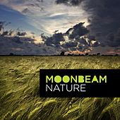 Nature by Moonbeam