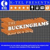 Kind Of A Drag by The Buckinghams