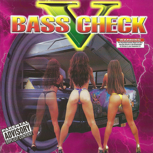 Bass Check V by Various Artists