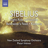 SIBELIUS, J.: Night Ride and Sunrise / Belshazaar's Feast Suite / Pan and Echo (Inkinen) by Pietari Inkinen