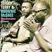 Backwater Blues by Sonny Terry