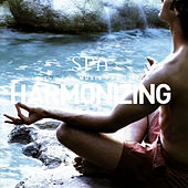 Harmonizing (Spa Series) by Global Journey