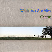 While You Are Alive by Cantus