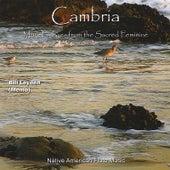 Cambria by Memo