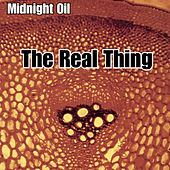 The Real Thing by Midnight Oil