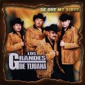 De Que Me Sirve by Los Grandes De Tijuana