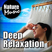 Deep Relaxation (Nature Sound with Music) by Nature Music