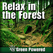 Relax in the Forest (Nature Sound) by Green Powered