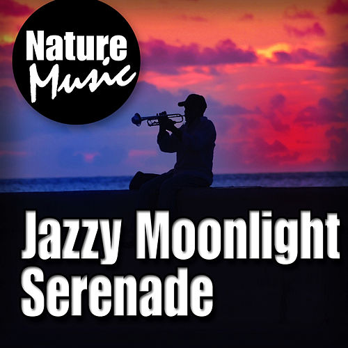 Jazzy Moonlight Serenade (Nature Sound with Music) by Nature Music