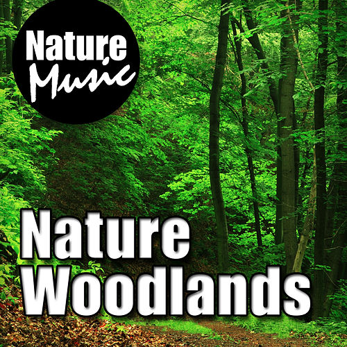Nature Woodlands (Nature Sound with Music) by Nature Music